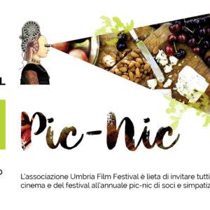 Pic Nic del Festival