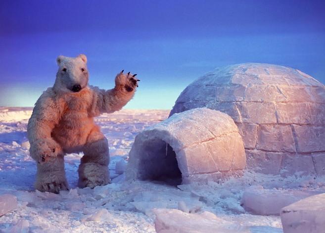 Jääkarhu soitti kerran Afrikkaan